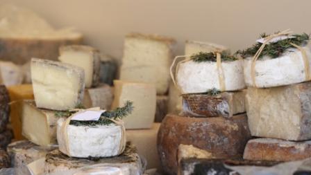istock_000005083904xsmall1-cheese1