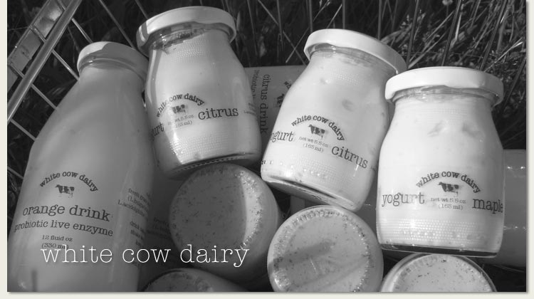 white-cow-products