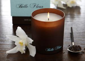 Belle Fleur PDF