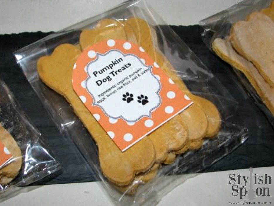 Homemade Pumpkin Dog Treats | www.StylishSpoon.com