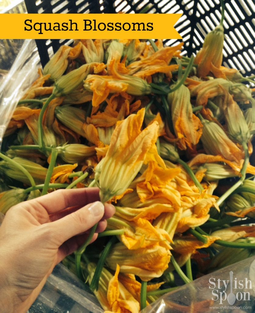 Stuffed Squash Blossoms Recipe