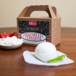 Urban Cheesemaking DIY mozzarella cheese kit - stylish spoon 2014 holiday gift guide