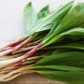 Kitchen Spotlight : Spring Ramps