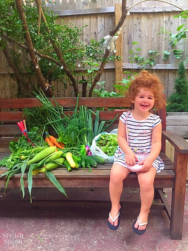 Lyla posing with the crop-share bounty during July 2017 pick-up. It was the first week we got corn and it was so sweet and delicious!