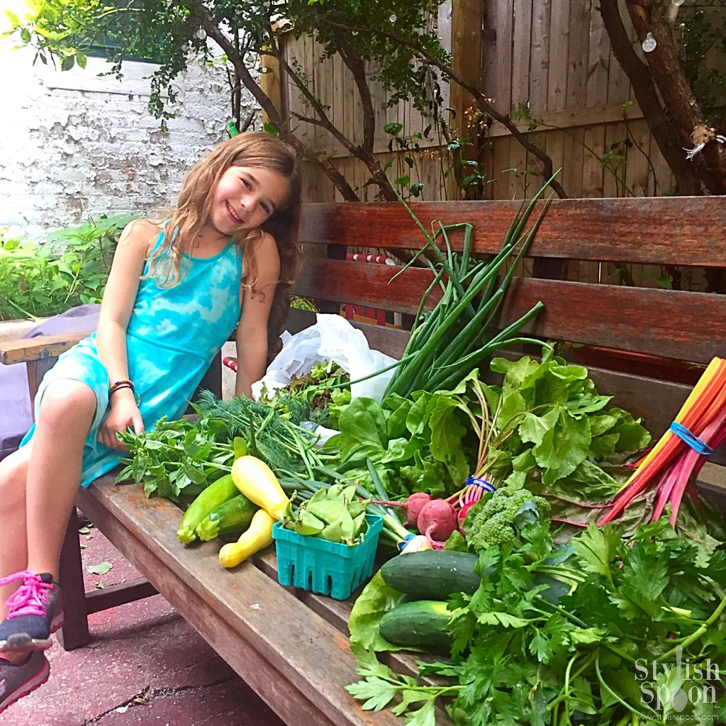Scarlett with our crop-share in June 2017. Still lots of leafy greens since it was so early in the season.